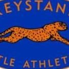Greystanes Little Athletics