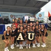 Adelphi University Cheerleading