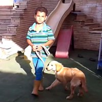 Maadi Pet Club