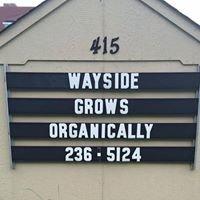 Wayside Community Garden