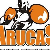 Arucas Fight Fitness