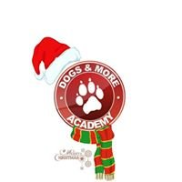 Dogs & More Academy