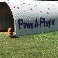 Paws A Playin Doggy Daycare & Boarding