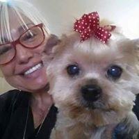 Millie's Dog World-  Pet Salon