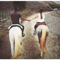Ato Rodriguez• Coaching y experiencias con caballos