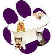 Wiggle Wags Pet Salon