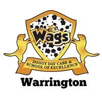 Wags doggy day care centre Warrington