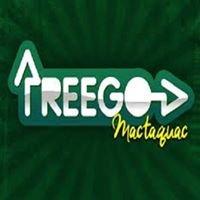 Treego Mactaquac