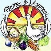 Plumes et Légumes