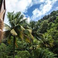 Banana Lama Eco Villa