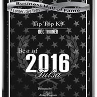 Tip Top K9 Tulsa Dog Training