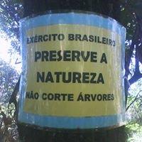 Diga NÃO ao Autódromo em Deodoro. Salve a Floresta do Camboatá RJ Brasil.