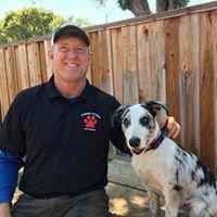Canine Tutors Dog Training And Social Club