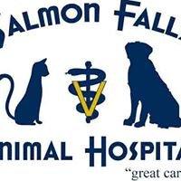 Salmon Falls Animal Hospital