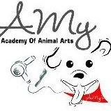 Amy's Academy of Animal Arts