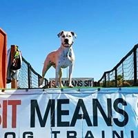 Sit Means Sit Dog Training Central Texas