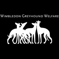 Wimbledon Greyhound Welfare