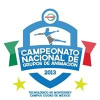 Campeonato Nacional de Grupos de Animación 2013