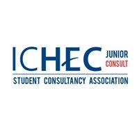 ICHEC Junior Consult