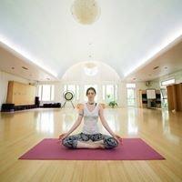 Yoga Yoga Westlake