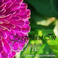 Suspended In Time - Flower Preservation