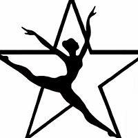 James Bowie High School Silver Stars