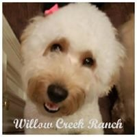 Willow Creek Ranch of Tomball