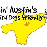 Buddy's Chance, LLC Austin Dog Training, Dog Behavior, and Dog Daycare