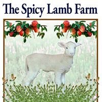 The Spicy Lamb Farm