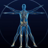 Alpha Medical Massage & Rehabilitation