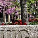 UIC Center for Economic Education