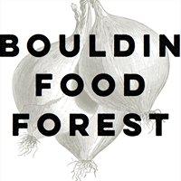 Bouldin Food Forest