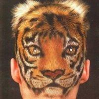 Studio 2000 Unisex Hair Salon