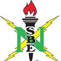 NSBE Region V Professionals