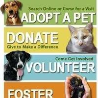 Las Vegas Rescue Pets