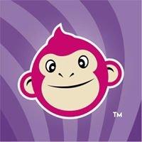 Yogurt Monkey