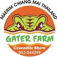 Maerim Crocodile Showฺเกเตอร์ฟาร์ม