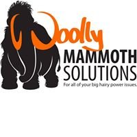 Woolly Mammoth Solutions