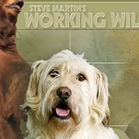 Steve Martins Working Wildlife