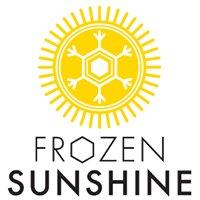 Frozen Sunshine Iceblocks