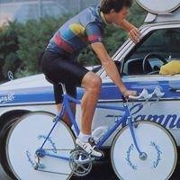 ART Bicycle Vintage