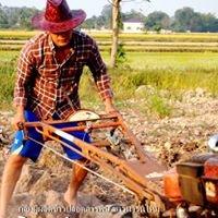 กลุ่มผู้ผลิตข้าวปลอดสารพิษ  ชาวนารุ่นใหม่ Organic rice Manager