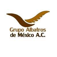 Albatros A.C.