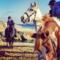 Menorca rutas a caballo