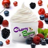 Cherry & Berry Italian frozen yogurt