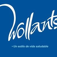 Clínica Wollants Online