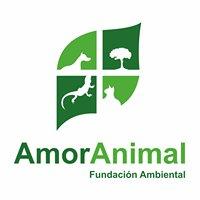 Fundación AmorAnimal