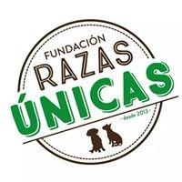 Fundación Razas Únicas