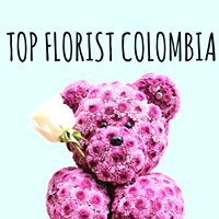 Top Florist Colombia & Ali Paris