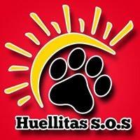 Huellitas S.O.S Guatemala, Adopciones